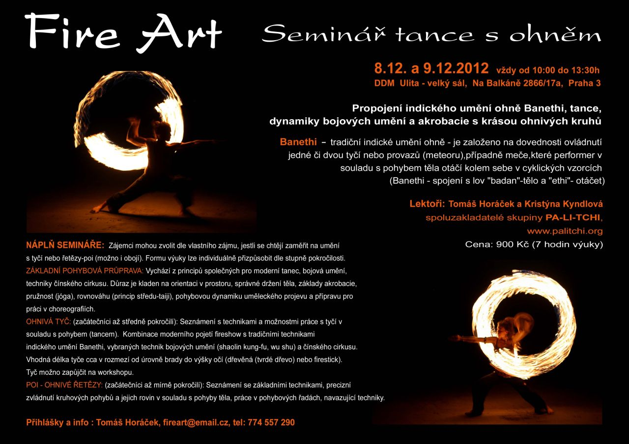 fireart_workshop_12-2012_flyer_web.jpg